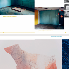 Oblique (2020), selected spreads