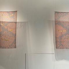 Priyageetha Dia, Typical Indian Snake I and II