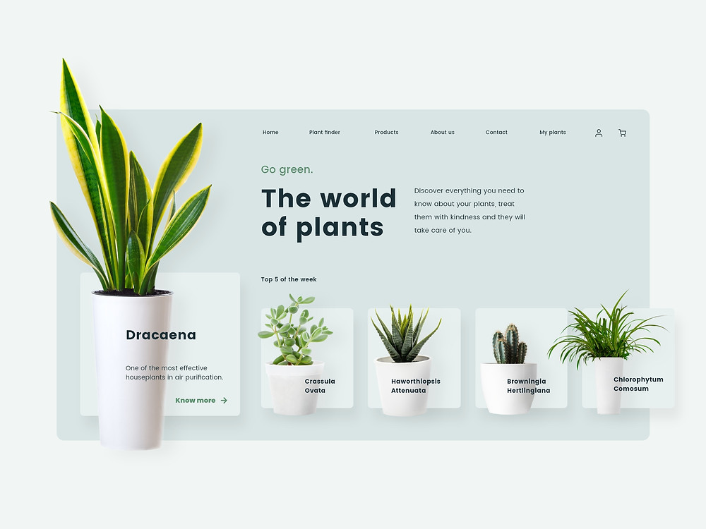Get inspired by this plants website design & feel free to learn these awesome interactions used inside it