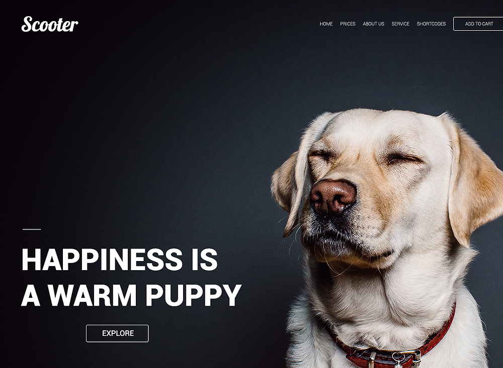 Download this template if u want a fancy dog services website design for your next project