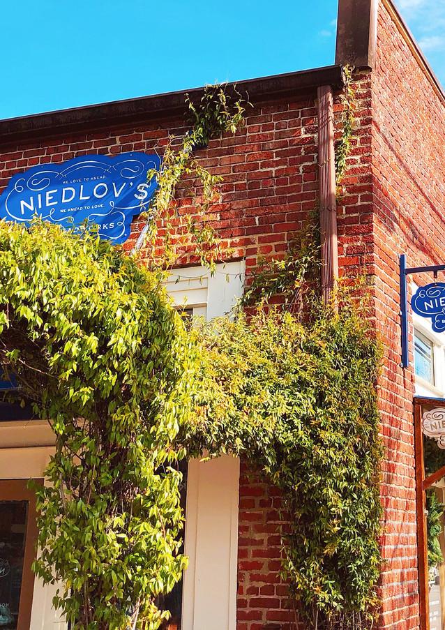 Niedlov's