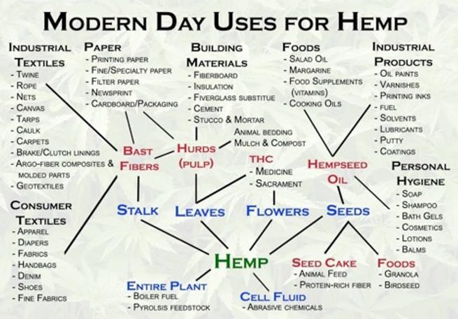 Hemp Uses.jpg
