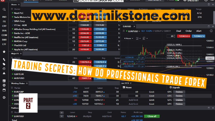 Trading Secrets: How Do Professionals Trade Forex - Part 2