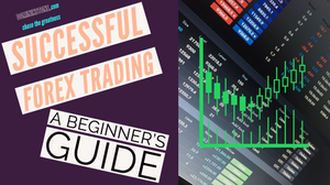 Forex Trading Tutorial For Beginners: Tips And Tricks