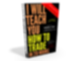 I Will Teach You How To Trade In 20 Hours, book written by Dominik Stone
