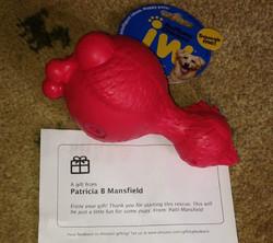 patricia Mansfield_edited.jpg