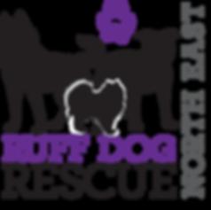 RDRNE logo
