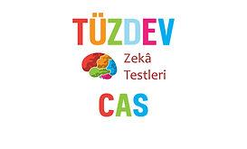 tuzdev_cas_zeka_testi.jpg
