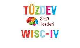tuzdev_wisc_4_zeka_testi.jpg