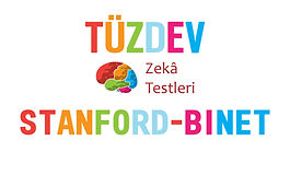 tuzdev_stanford_binet_zeka_testi.jpg
