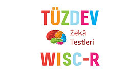 tuzdev_wisc_r_zeka_testi.jpg