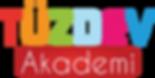 Akademi Logo.png