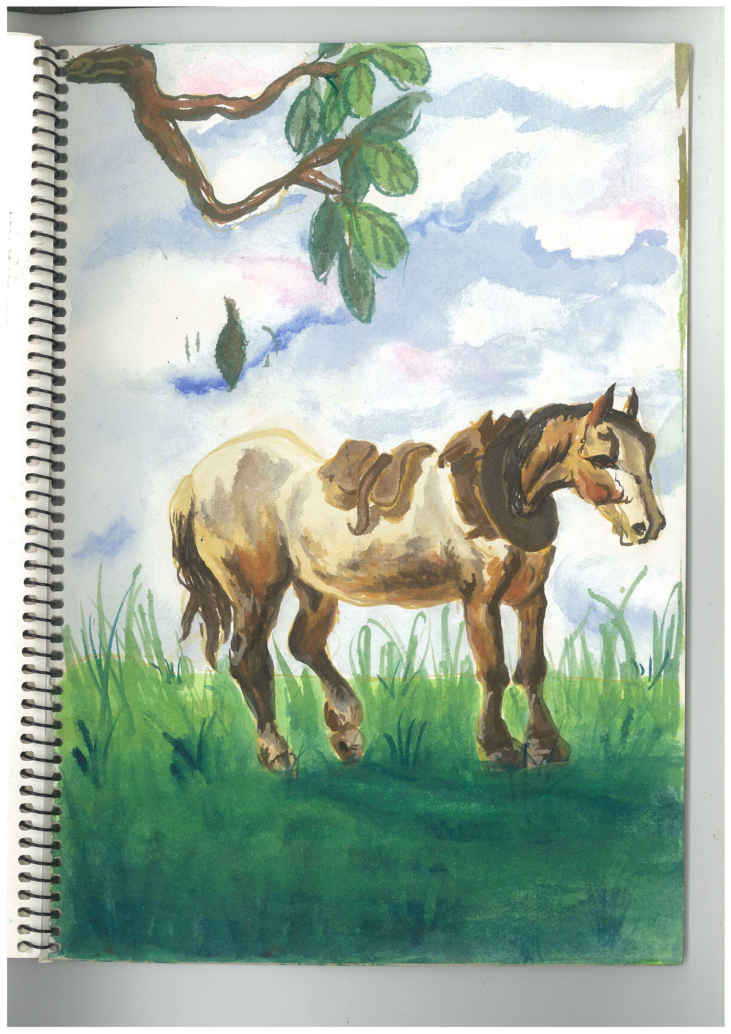 o.horse