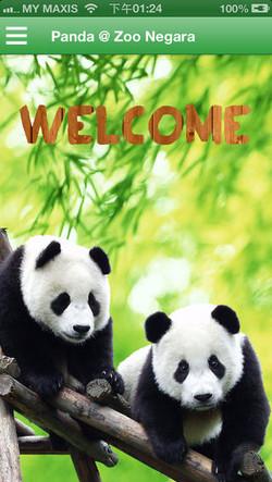 panda_zoo1