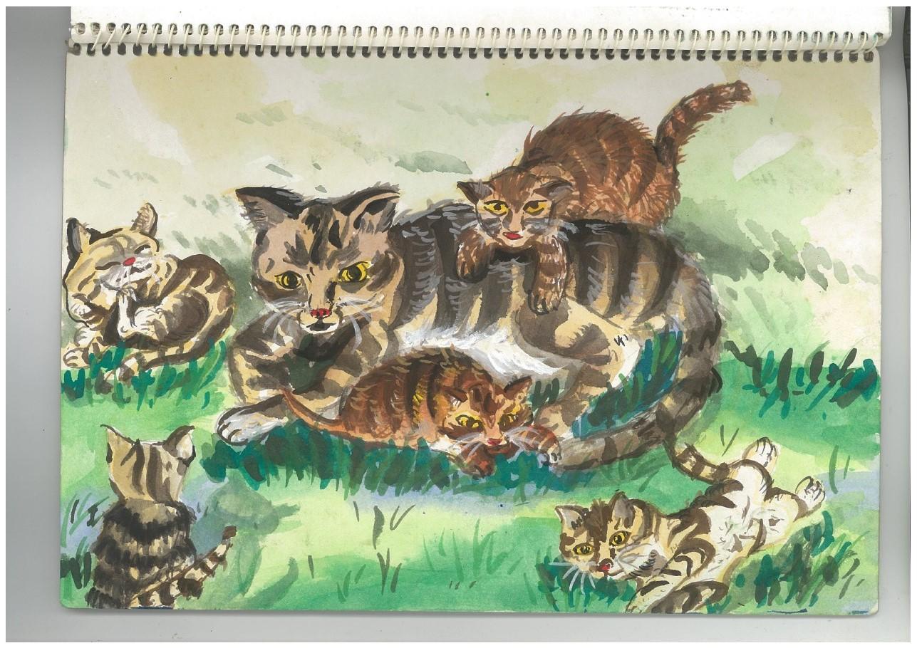 k.cat's family