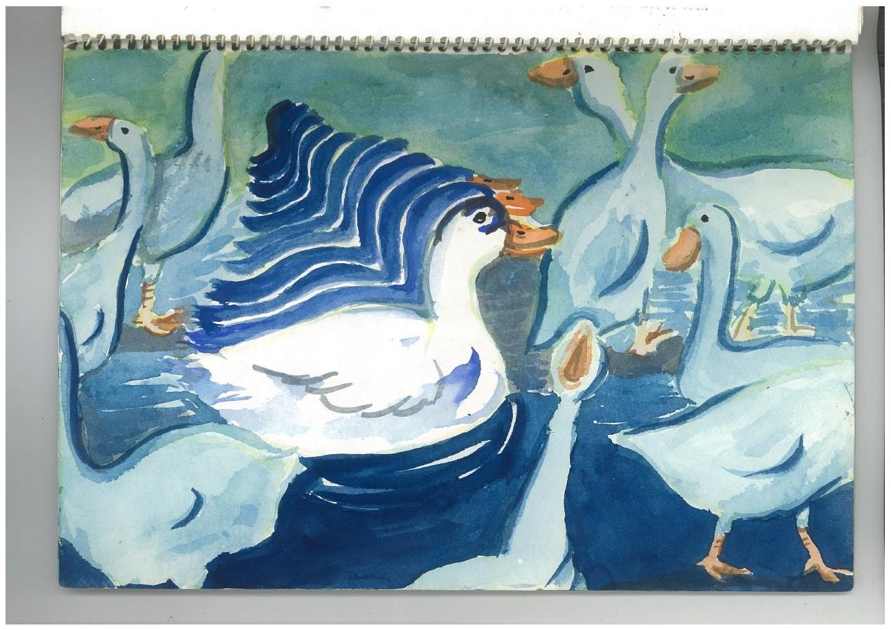 d.ducks