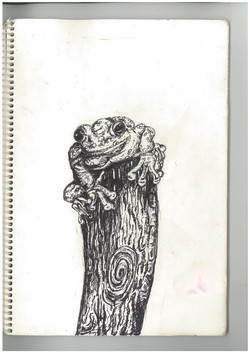 n.frog