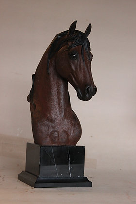"""Andalusian trophy"""