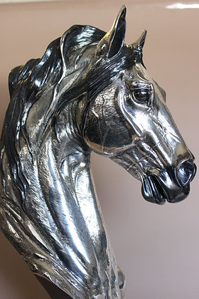 furia on silver