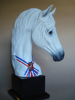 andalusian trophies, 2012