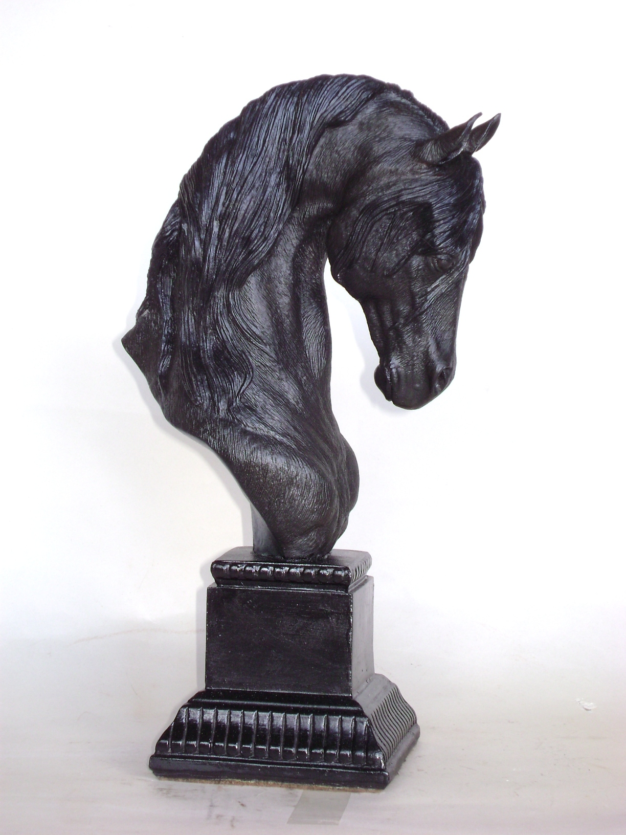 trophy  Friesian, 2011