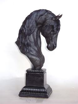 trophy  Friesian, 2011