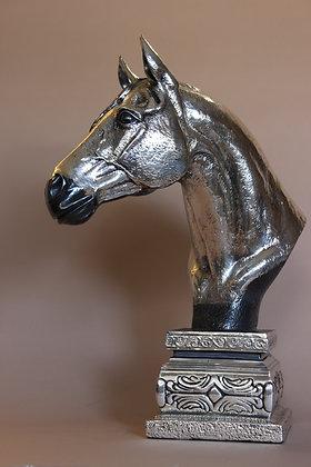 Q uarter horse (paint)