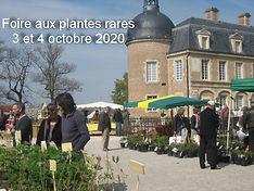 foire-aux-plantes-2014-001-12-160220_2.j