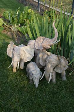 La petite troupe d'éléphants
