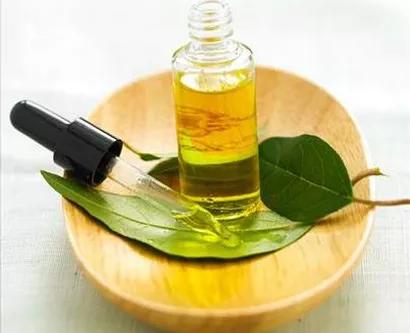 Eucalipto: Frescura portátil en un frasco de aceite esencial