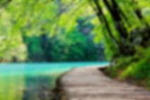 phyllis chapman spiritual intuitive medium pathway success angel animal communication  astrology aura energetic body connection esp extrasensory perception service contact psychic karma mystic oracle psychometry soul dream interpretation consultation read