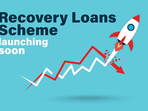 GOVT. BACKED - RECOVERY LOAN SCHEMES