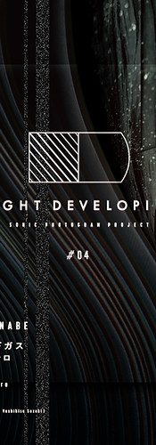 NIGHT DEVELOPING #04 -sonic photogram project-