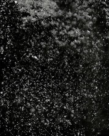 写真新世紀-2_edited.jpg
