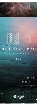 NIGHT DEVELOPING #05 -sonic photogram project-