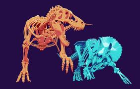 T. Rex Vs. Triceratops