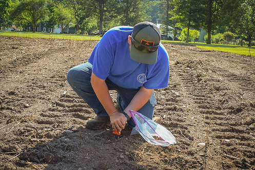 Soil Test and Consulting