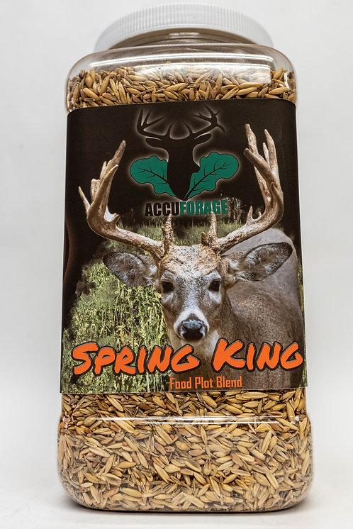 Spring King Catalyst