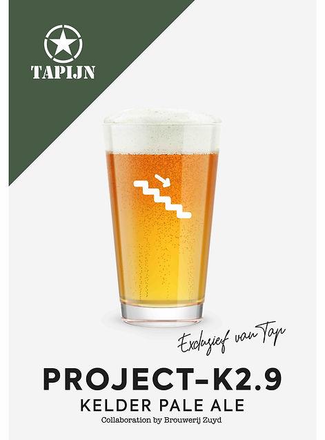 Project k2.9 promosheet.jpg