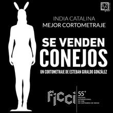 PREMIO India Catalina a Mejor Cortometraje - 55 Festival Internacional de Cine de Cartagena de India