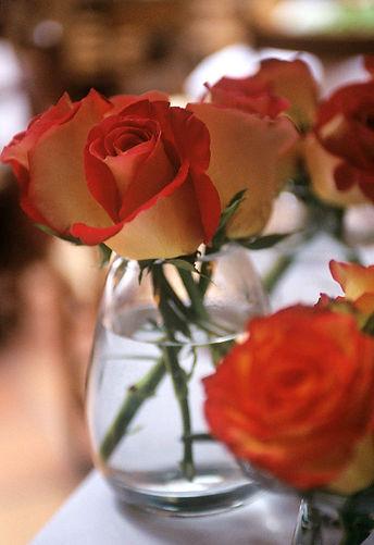 c.vase.jpg