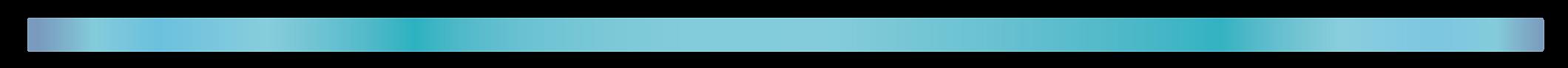 HPV $4800 website version 2020-03-20-04.