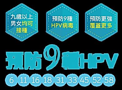 HPV $4800 website version 2020-03-20-11.