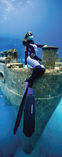pfi_freediver_sm_covers_spine_v0819.jpg