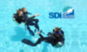 SDI-Instructor.jpg