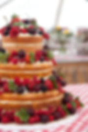 Mitchell Naked Wedding cake-3.jpg