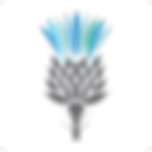Sugared-Thistle-Favicon_512px_trans.png