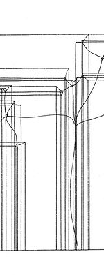 Konstruktionsplan der Natur   Architektur der welkenden Pflanze
