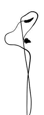 Geheimdialog zwischen Pflanzen | Sprache in der Aura