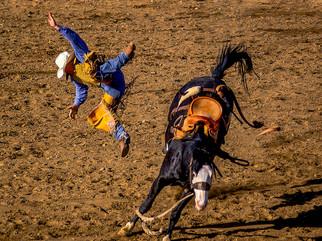 Phelan Rodeo